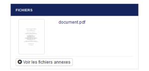 voir_fichier_annexe